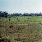 Phu Loc 6 68 Tet Mine Field